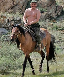 Weyer-horseback